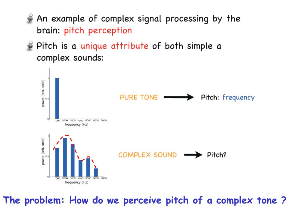 The problem: How do we perceive pitch of a complex tone