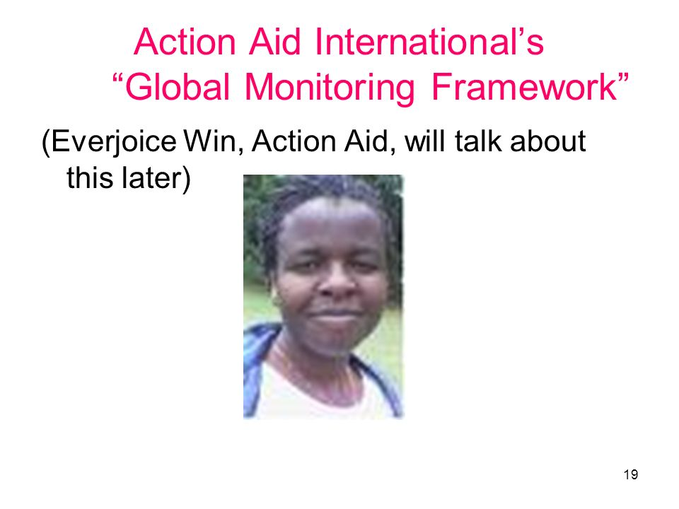 19 Action Aid Internationals Global Monitoring Framework (Everjoice Win, Action Aid, will talk about this later)