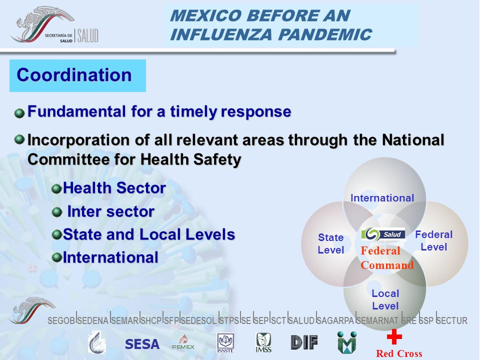 MEXICO BEFORE AN INFLUENZA PANDEMIC Coordination Fundamental for a timely responseFundamental for a timely response Incorporation of all relevant areas through the National Committee for Health SafetyIncorporation of all relevant areas through the National Committee for Health Safety Health SectorHealth Sector Inter sector Inter sector State and Local LevelsState and Local Levels InternationalInternational International Federal Level State Level Local Level Federal Command SESA Red Cross SEGOB SEDENA SEMAR SHCP SFP SEDESOL STPS SE SEP SCT SALUD SAGARPA SEMARNAT SRE SSP SECTUR