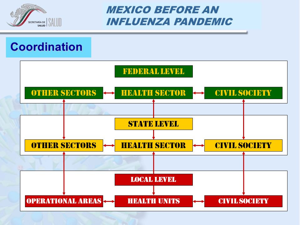 MEXICO BEFORE AN INFLUENZA PANDEMIC Coordination FEDERAL LEVEL CIVIL SOCIETYHEALTH SECTOROTHER SECTORS STATE LEVEL CIVIL SOCIETYHEALTH SECTOROTHER SECTORS LOCAL LEVEL CIVIL SOCIETYHEALTH UNITSOPERATIONAL AREAS