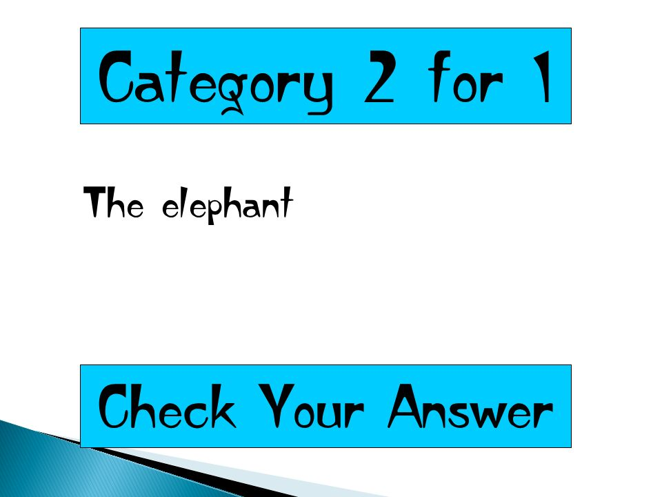 Category 2 for 1 The elephant Check Your Answer