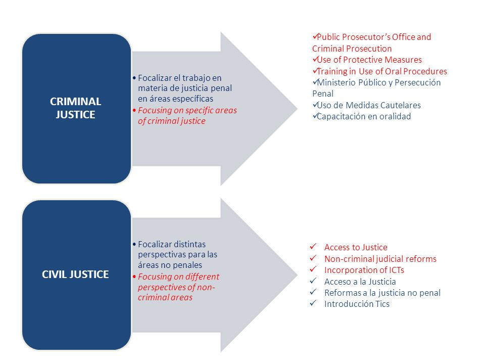 Focalizar el trabajo en materia de justicia penal en áreas específicas Focusing on specific areas of criminal justice CRIMINAL JUSTICE Focalizar distintas perspectivas para las áreas no penales Focusing on different perspectives of non- criminal areas CIVIL JUSTICE Public Prosecutors Office and Criminal Prosecution Use of Protective Measures Training in Use of Oral Procedures Ministerio Público y Persecución Penal Uso de Medidas Cautelares Capacitación en oralidad Access to Justice Non-criminal judicial reforms Incorporation of ICTs Acceso a la Justicia Reformas a la justicia no penal Introducción Tics