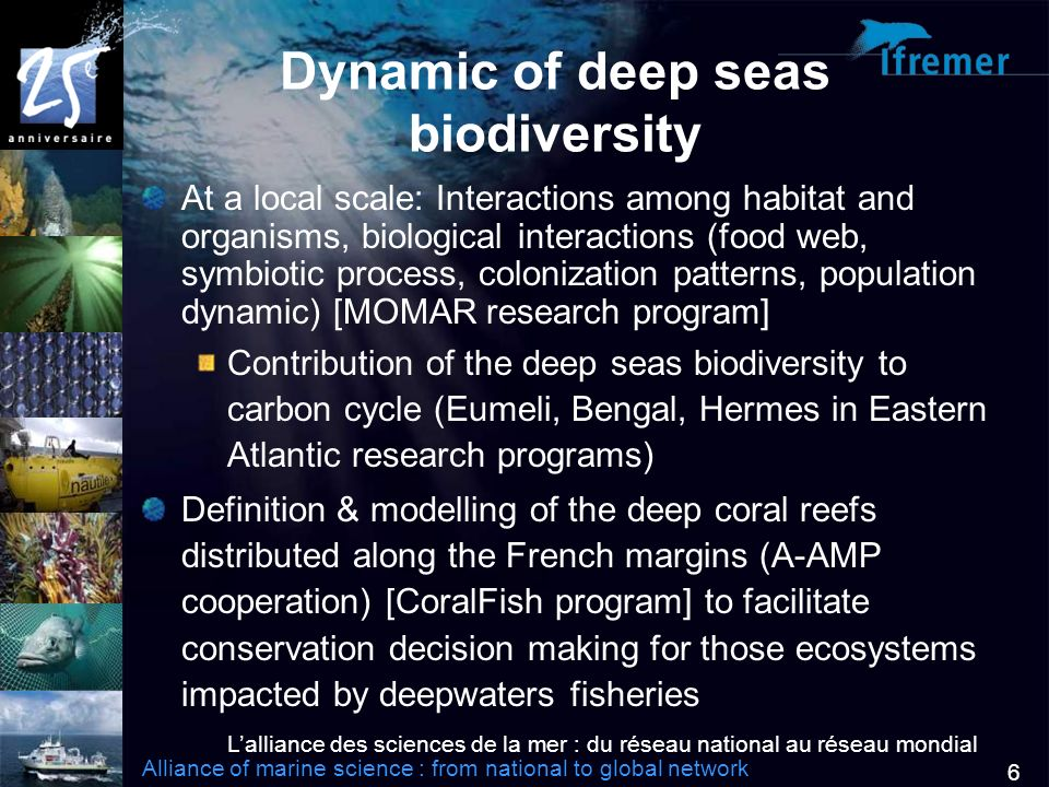 Lalliance des sciences de la mer : du réseau national au réseau mondial Alliance of marine science : from national to global network 6 Dynamic of deep seas biodiversity At a local scale: Interactions among habitat and organisms, biological interactions (food web, symbiotic process, colonization patterns, population dynamic) [MOMAR research program] Contribution of the deep seas biodiversity to carbon cycle (Eumeli, Bengal, Hermes in Eastern Atlantic research programs) Definition & modelling of the deep coral reefs distributed along the French margins (A-AMP cooperation) [CoralFish program] to facilitate conservation decision making for those ecosystems impacted by deepwaters fisheries