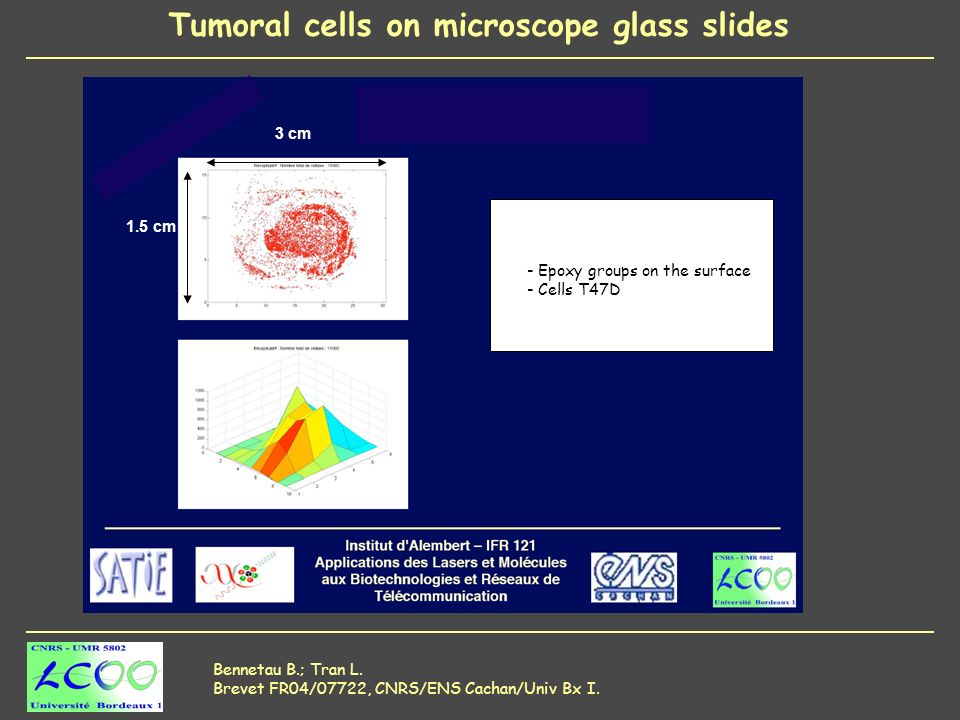 Tumoral cells on microscope glass slides Bennetau B.; Tran L.