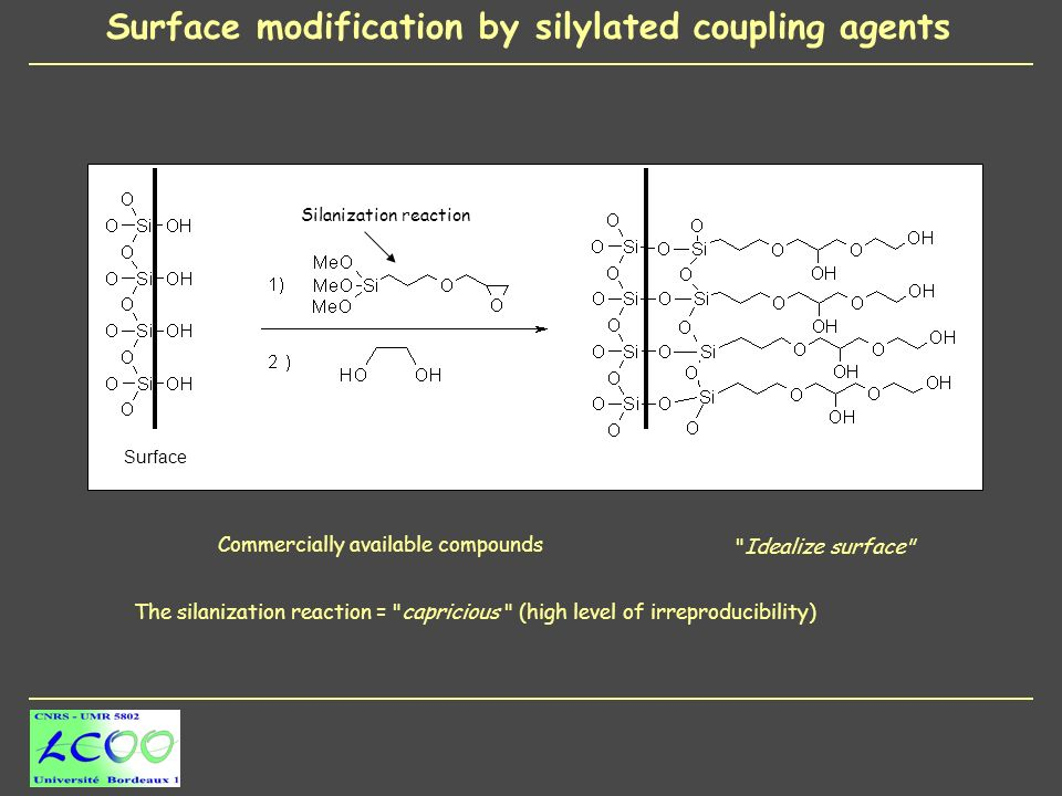 Surface modification by silylated coupling agents Surface Commercially available compounds Idealize surface Silanization reaction The silanization reaction = capricious (high level of irreproducibility)