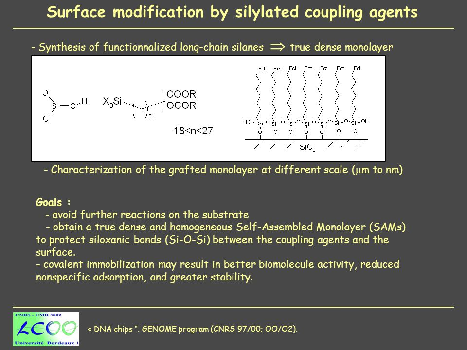 Goals : - avoid further reactions on the substrate - obtain a true dense and homogeneous Self-Assembled Monolayer (SAMs) to protect siloxanic bonds (Si-O-Si) between the coupling agents and the surface.