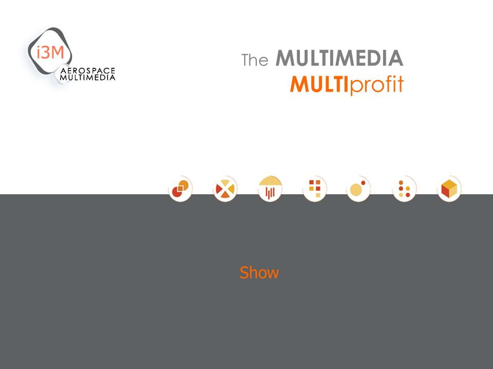 Show The MULTIMEDIA MULTI profit
