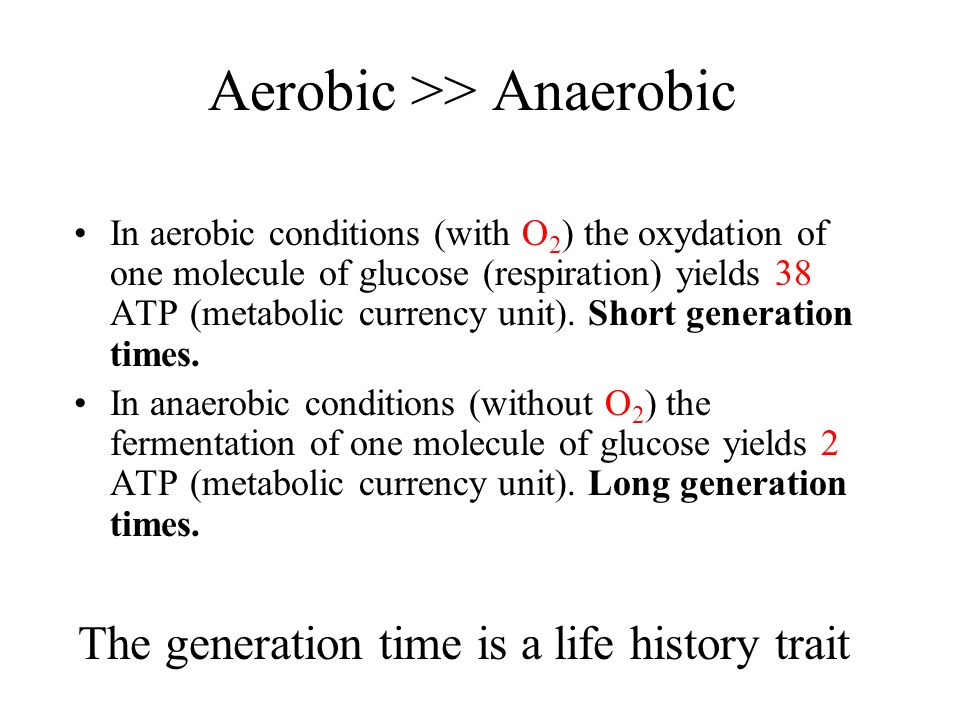 Aerobic >> Anaerobic In aerobic conditions (with O 2 ) the oxydation of one molecule of glucose (respiration) yields 38 ATP (metabolic currency unit).