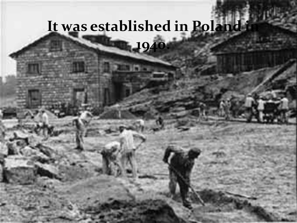 It was established in Poland in 1940.