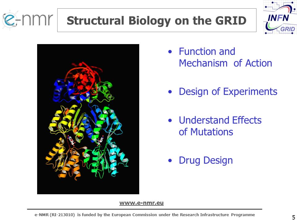 e-NMR (RI-213010) is funded by the European Commission under the Research Infrastructure Programme www.e-nmr.eu Structural Biology on the GRID Function and Mechanism of Action Design of Experiments Understand Effects of Mutations Drug Design 5
