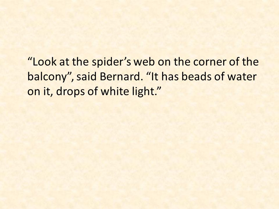 Look at the spiders web on the corner of the balcony, said Bernard.