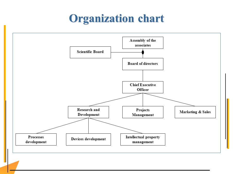 Organization chart Assembly of the associates Board of directors Chief Executive Officer Research and Development Projects Management Processes development Marketing & Sales Intellectual property management Devices development Scientific Board