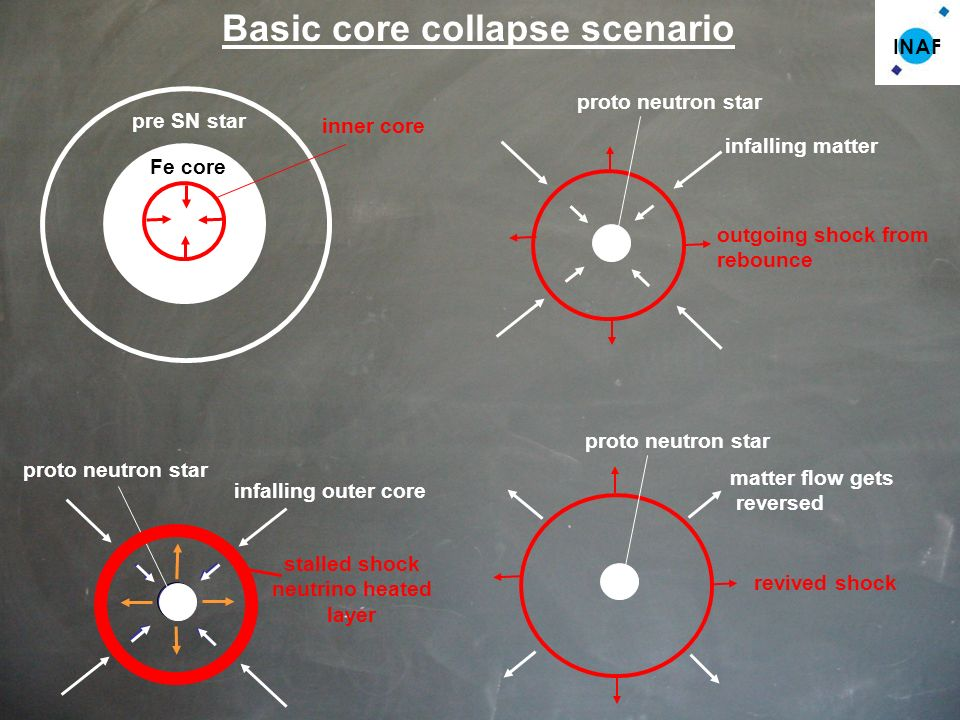 Basic core collapse scenario Fe core inner core pre SN star infalling matter outgoing shock from rebounce proto neutron star infalling outer core proto neutron star stalled shock neutrino heated layer revived shock matter flow gets reversed proto neutron star