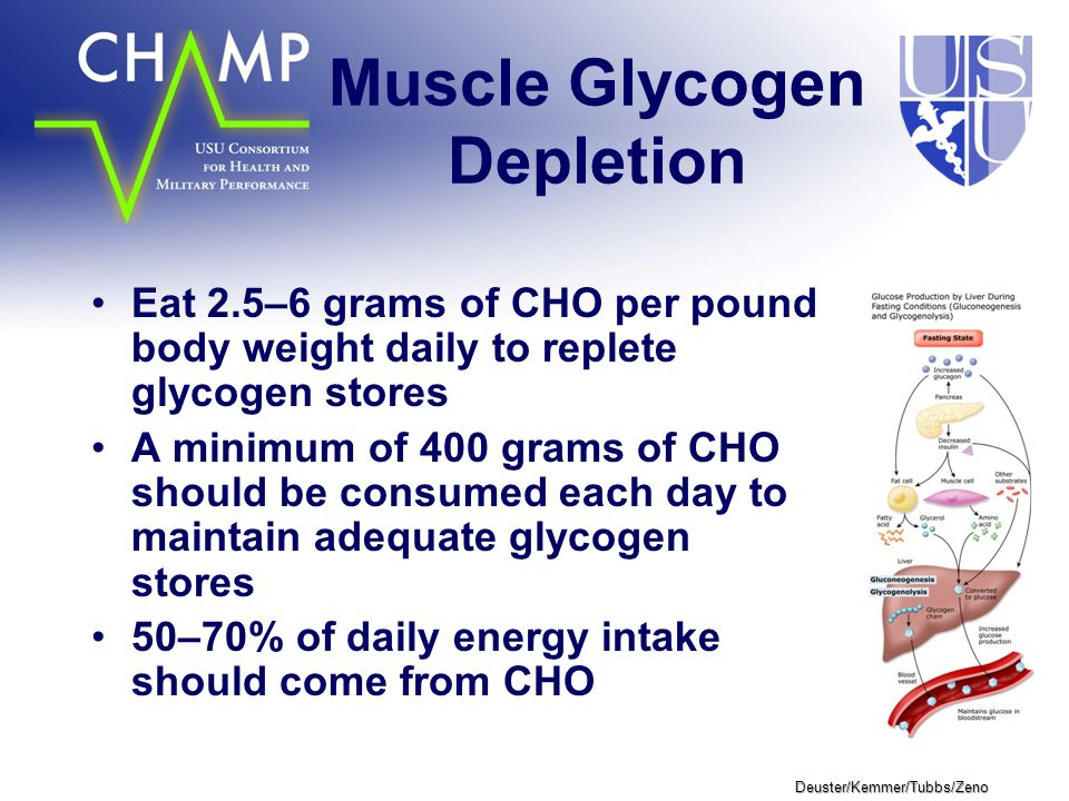 Deuster/Kemmer/Tubbs/Zeno Muscle Glycogen Depletion Eat 2.5–6 grams of CHO per pound body weight daily to replete glycogen stores A minimum of 400 grams of CHO should be consumed each day to maintain adequate glycogen stores 50–70% of daily energy intake should come from CHO