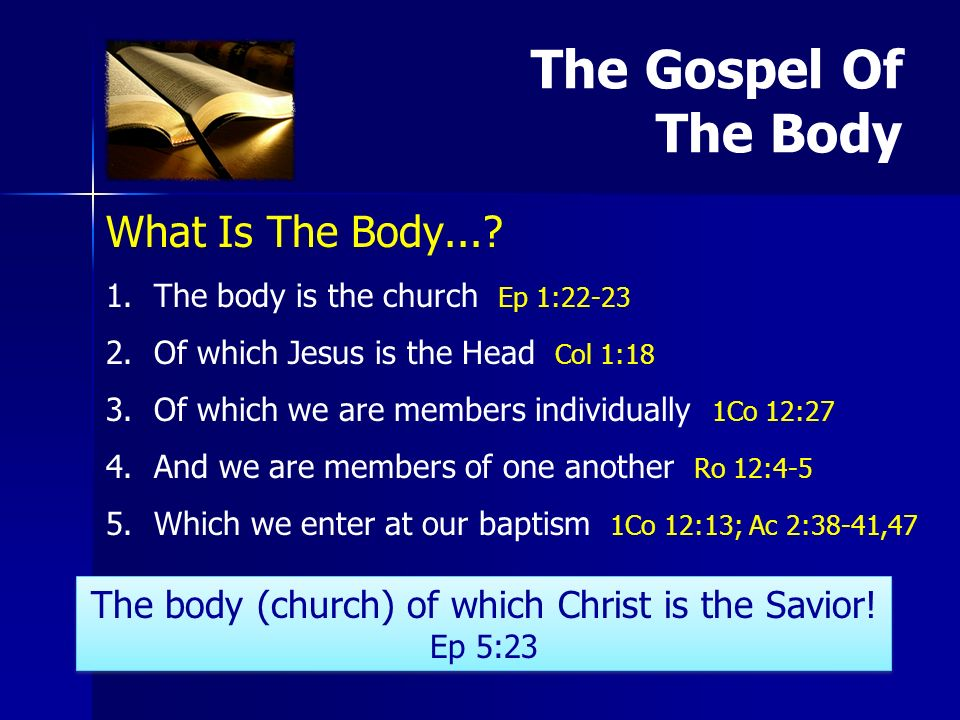 What Is The Body.... 1. 1.The body is the church Ep 1:22-23 2.
