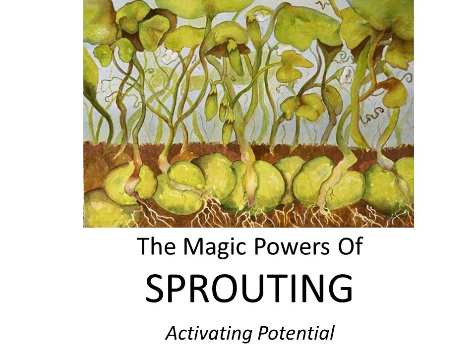 The Magic Powers Of SPROUTING Activating Potential