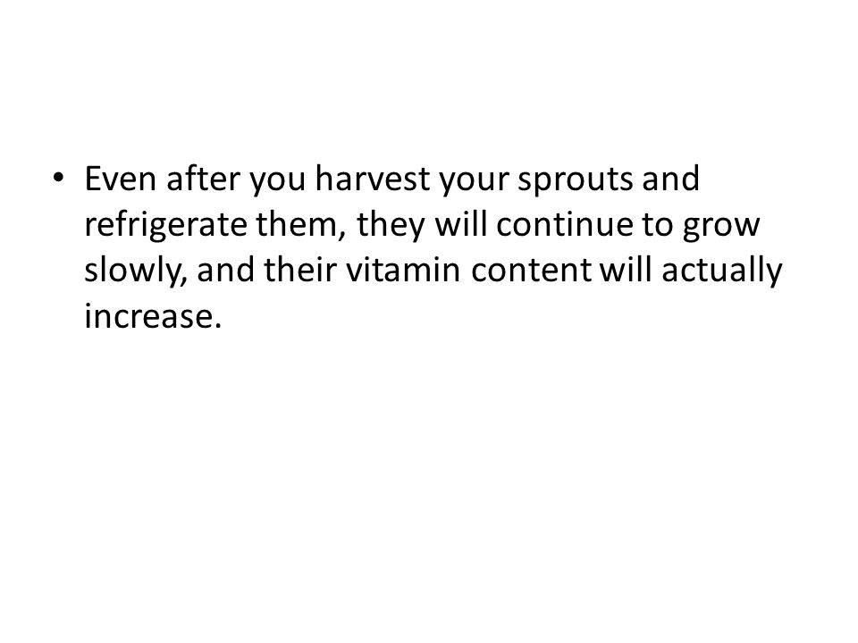 Even after you harvest your sprouts and refrigerate them, they will continue to grow slowly, and their vitamin content will actually increase.