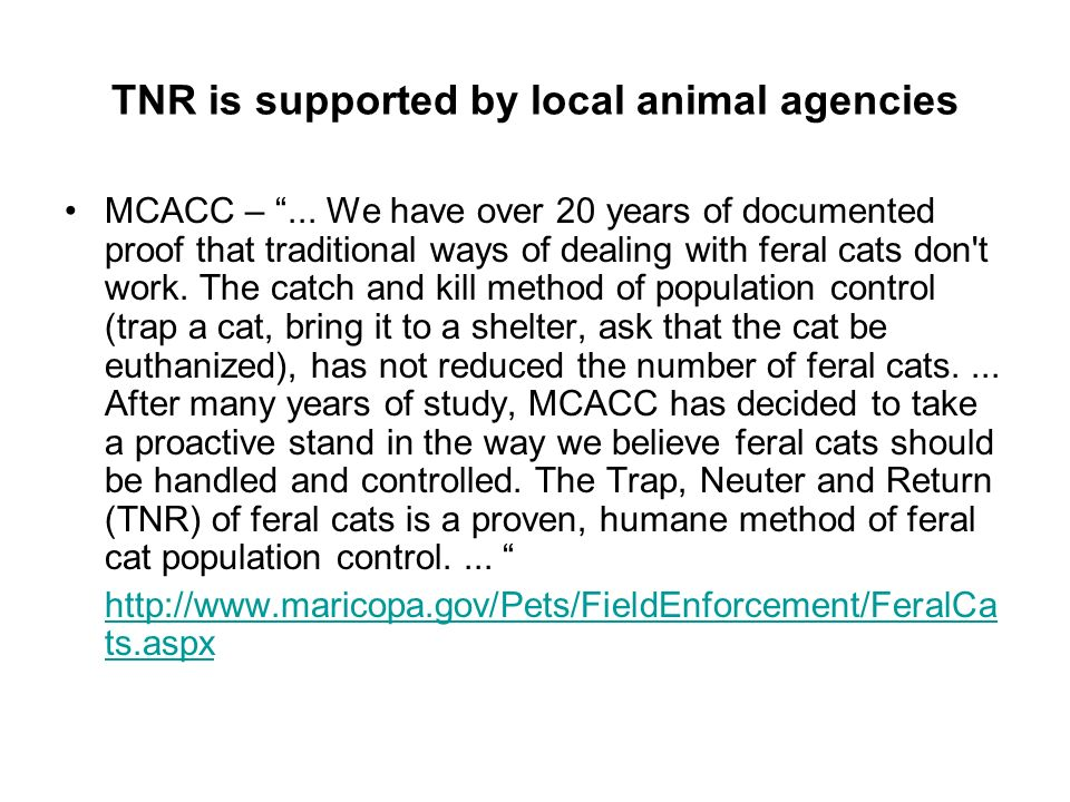 TNR is supported by local animal agencies MCACC –...