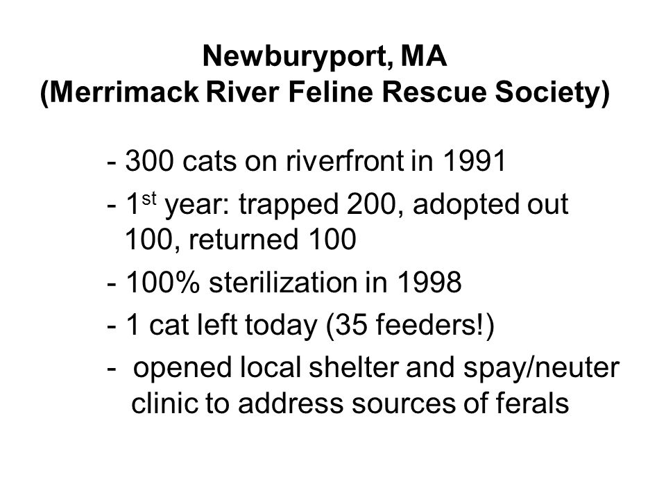Newburyport, MA (Merrimack River Feline Rescue Society) - 300 cats on riverfront in 1991 - 1 st year: trapped 200, adopted out 100, returned 100 - 100% sterilization in 1998 - 1 cat left today (35 feeders!) - opened local shelter and spay/neuter clinic to address sources of ferals