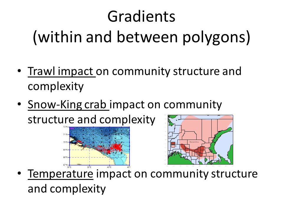 Gradients (within and between polygons) Trawl impact on community structure and complexity Snow-King crab impact on community structure and complexity Temperature impact on community structure and complexity
