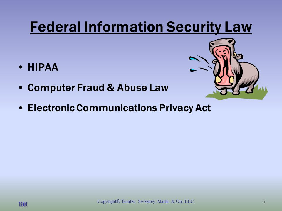 Copyright © Tsoules, Sweeney, Martin & Orr, LLC5 Federal Information Security Law HIPAA Computer Fraud & Abuse Law Electronic Communications Privacy Act