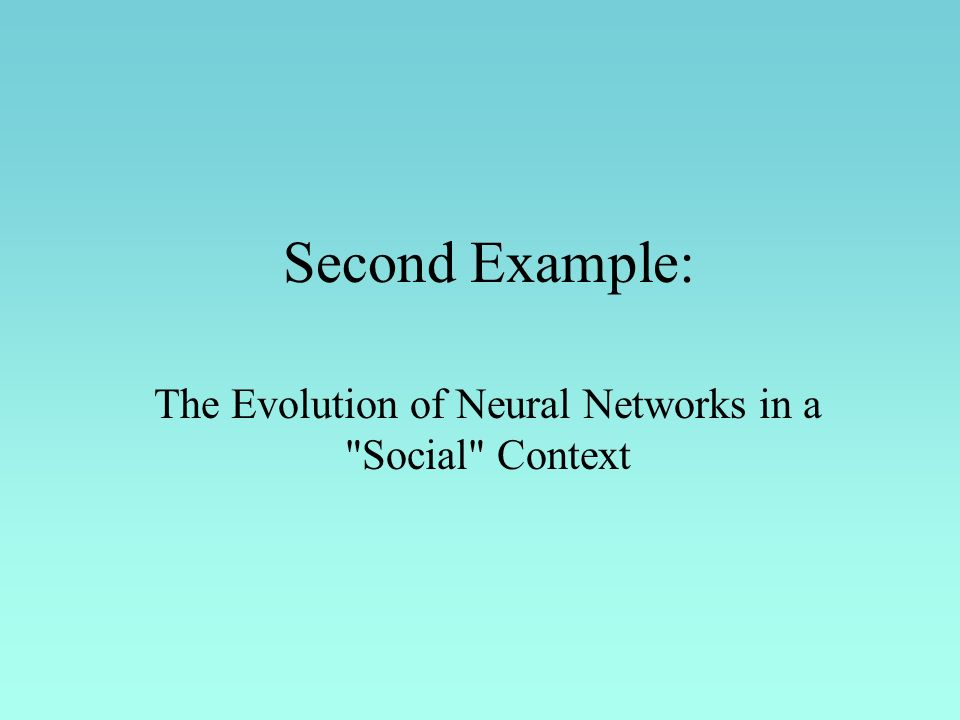 Second Example: The Evolution of Neural Networks in a Social Context