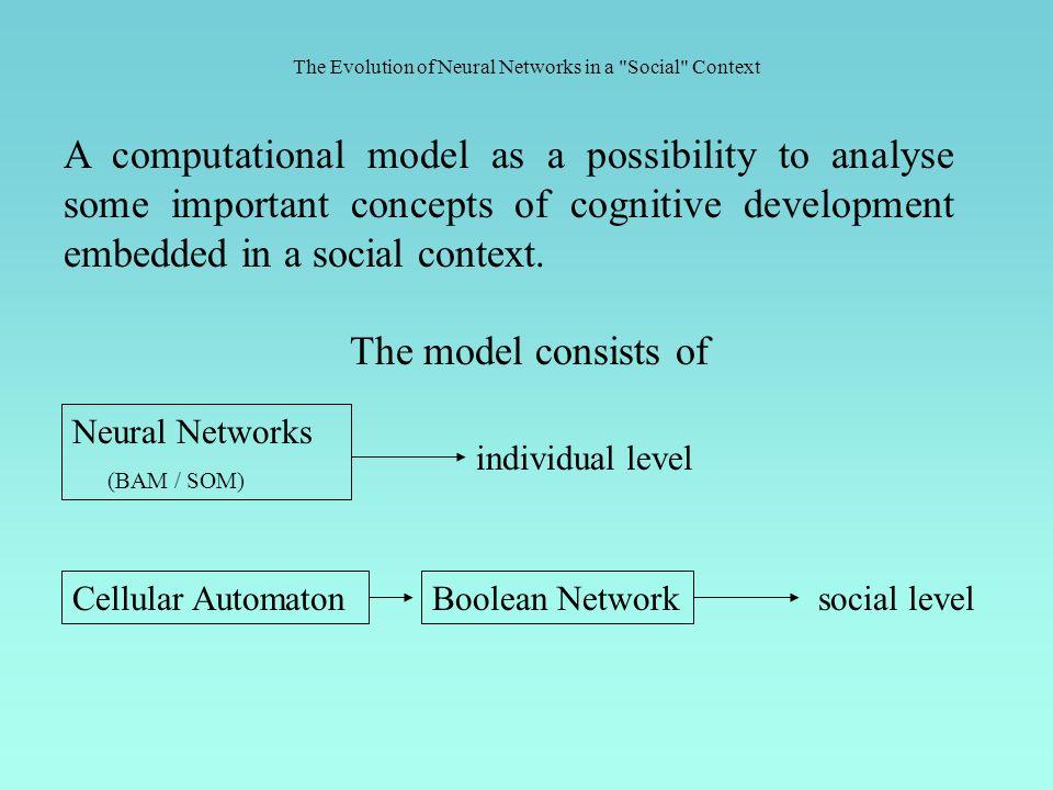 A computational model as a possibility to analyse some important concepts of cognitive development embedded in a social context.