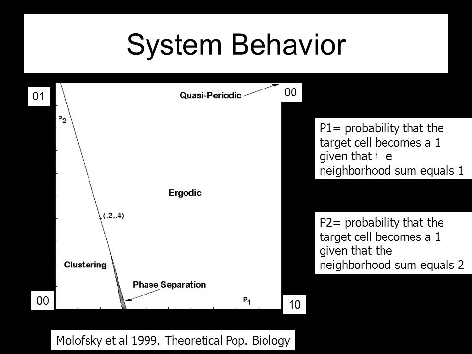 System Behavior 1,0 0,1 1,1 0,0 P1 P2 P2= probability that the target cell becomes a 1 given that the neighborhood sum equals 2 P1= probability that the target cell becomes a 1 given that the neighborhood sum equals 1 (0.2,0.4)Voter rule clustering Ergodic periodic Phase separation Molofsky et al 1999.