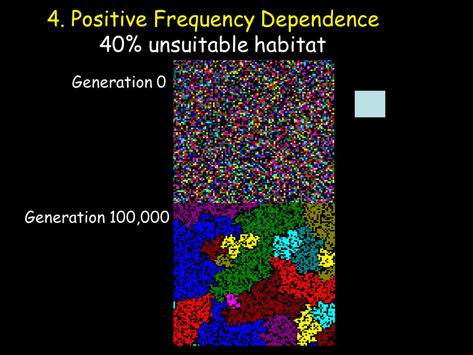 4. Positive Frequency Dependence 40% unsuitable habitat Generation 0 Generation 100,000