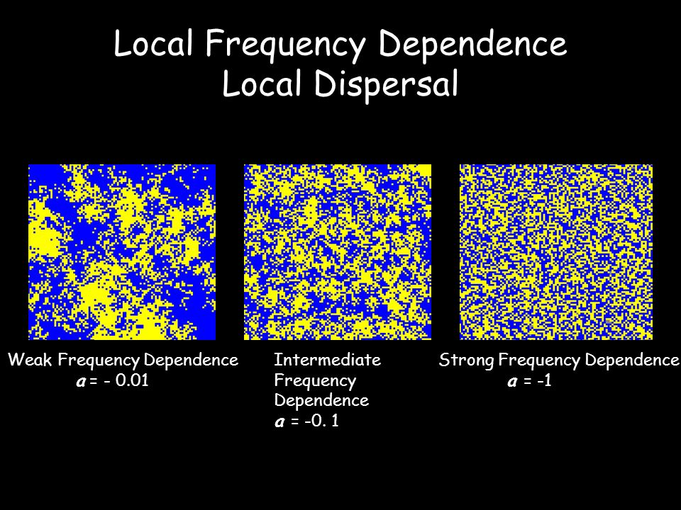 Local Frequency Dependence Local Dispersal Strong Frequency Dependence a = -1 Intermediate Frequency Dependence a = -0.