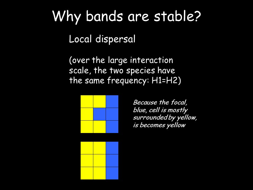 Why bands are stable.