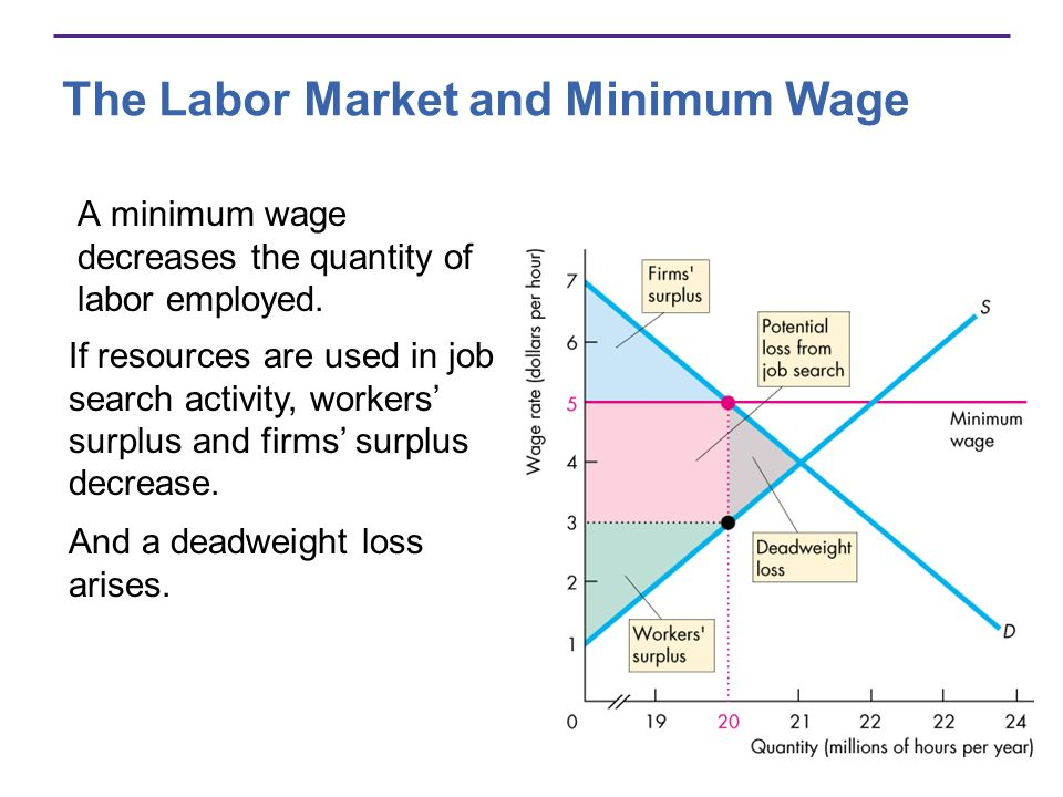 The Labor Market and Minimum Wage A minimum wage decreases the quantity of labor employed.