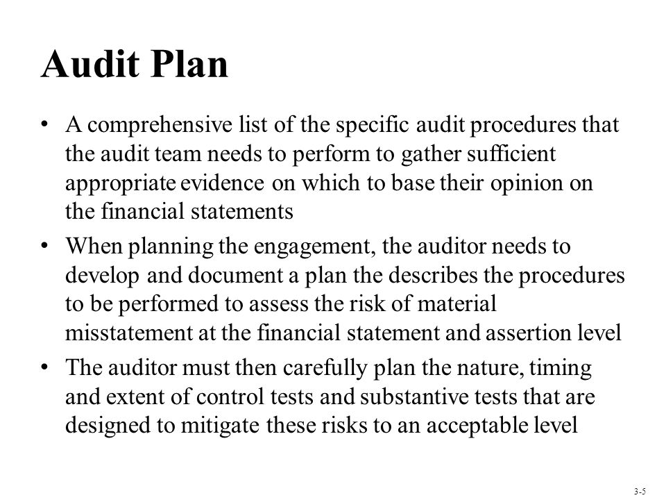 Audit Plan A comprehensive list of the specific audit procedures that the audit team needs to perform to gather sufficient appropriate evidence on which to base their opinion on the financial statements When planning the engagement, the auditor needs to develop and document a plan the describes the procedures to be performed to assess the risk of material misstatement at the financial statement and assertion level The auditor must then carefully plan the nature, timing and extent of control tests and substantive tests that are designed to mitigate these risks to an acceptable level 3-5