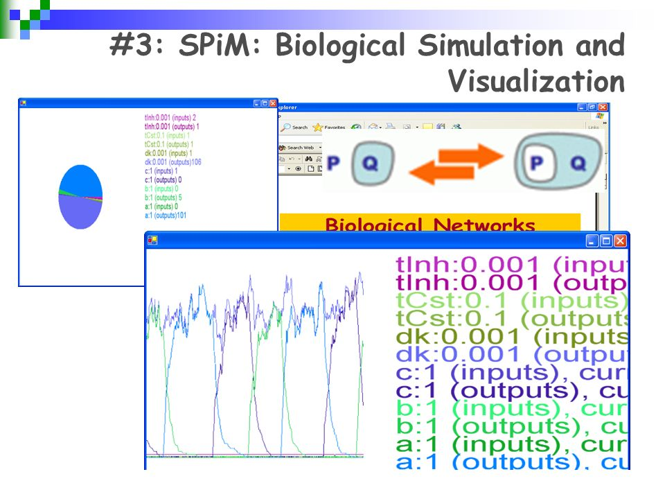 #3: SPiM: Biological Simulation and Visualization