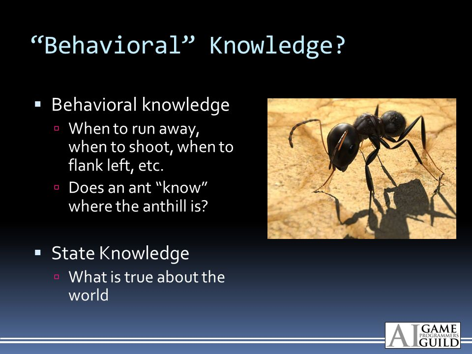 Behavioral Knowledge.
