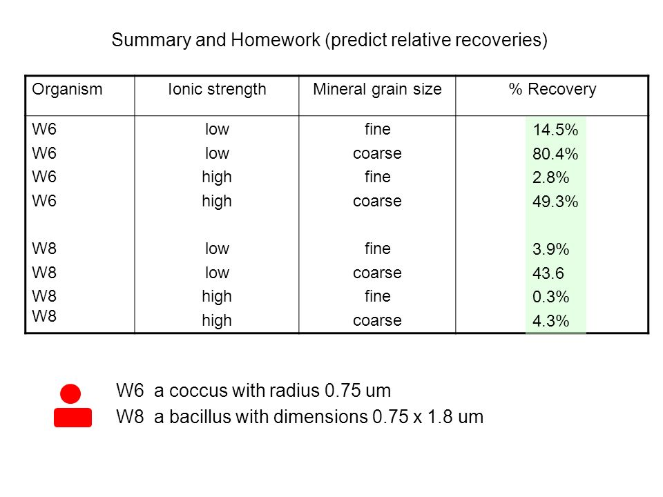 OrganismIonic strengthMineral grain size% Recovery W6 W8 W8 low high low high fine coarse fine coarse fine coarse fine coarse W6 a coccus with radius 0.75 um W8 a bacillus with dimensions 0.75 x 1.8 um Summary and Homework (predict relative recoveries) 14.5% 80.4% 2.8% 49.3% 3.9% 43.6 0.3% 4.3%