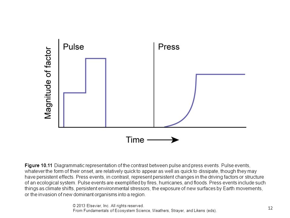 12 Figure 10.11 Diagrammatic representation of the contrast between pulse and press events.