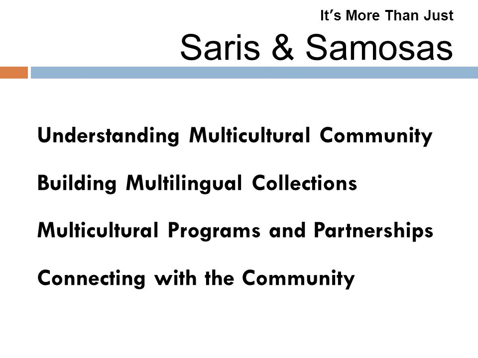 It s More Than Just Saris & Samosas Understanding Multicultural Community Building Multilingual Collections Multicultural Programs and Partnerships Connecting with the Community