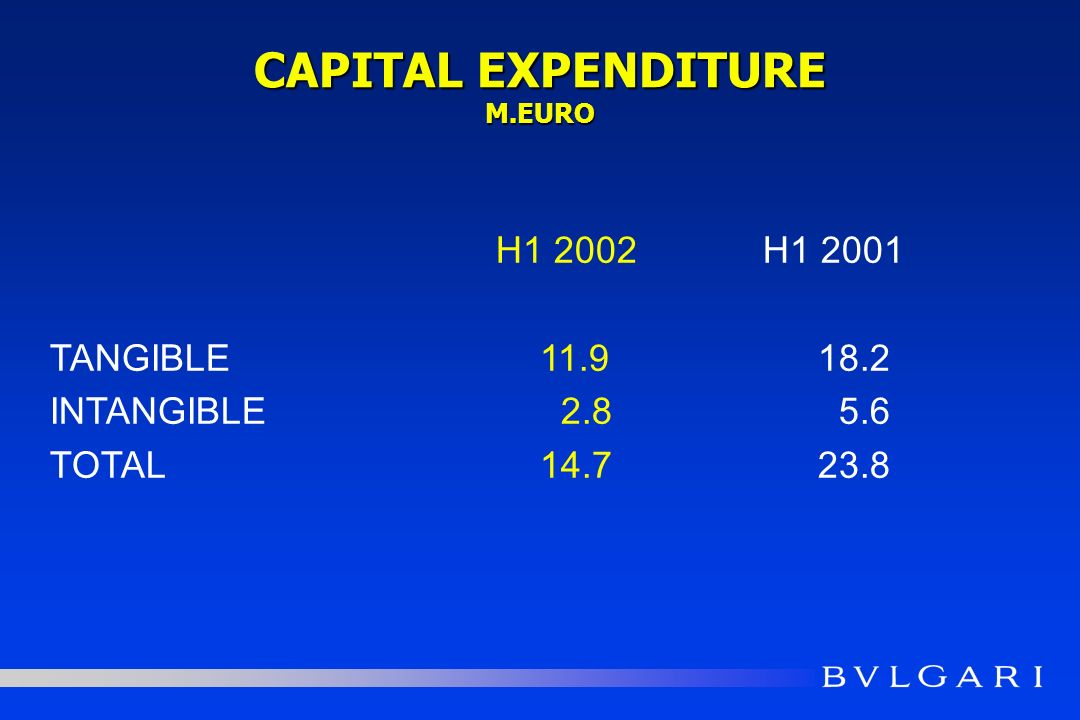 CAPITAL EXPENDITURE M.EURO H1 2002 H1 2001 TANGIBLE 11.918.2 INTANGIBLE 2.8 5.6 TOTAL 14.723.8
