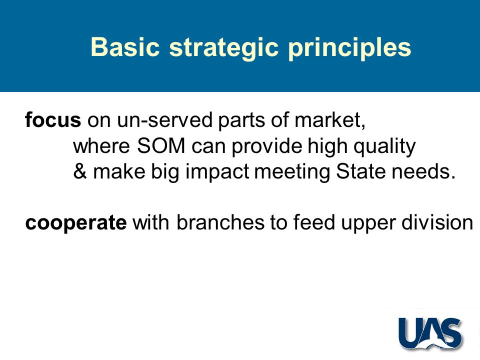 Basic strategic principles focus on un-served parts of market, where SOM can provide high quality & make big impact meeting State needs.
