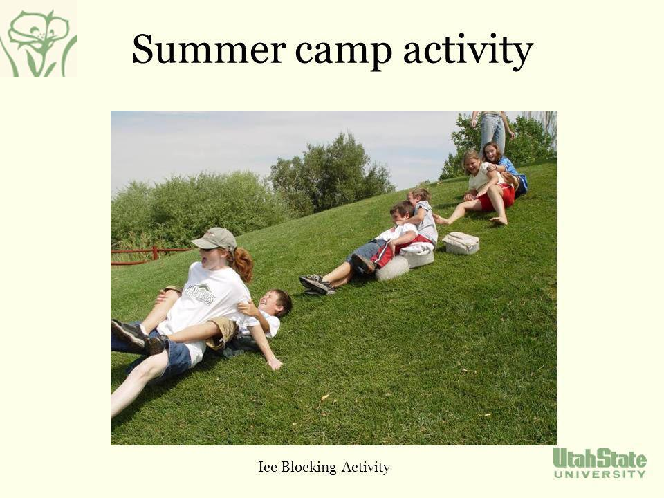 Summer camp activity Ice Blocking Activity