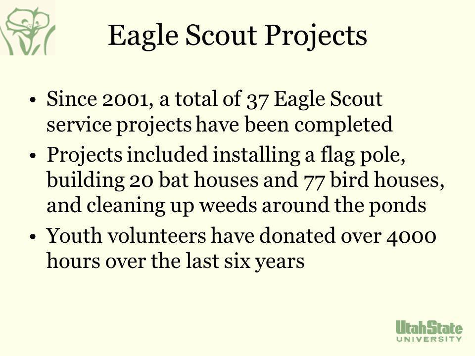 Eagle Scout Projects Since 2001, a total of 37 Eagle Scout service projects have been completed Projects included installing a flag pole, building 20 bat houses and 77 bird houses, and cleaning up weeds around the ponds Youth volunteers have donated over 4000 hours over the last six years