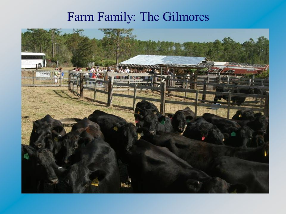 Farm Family: The Gilmores