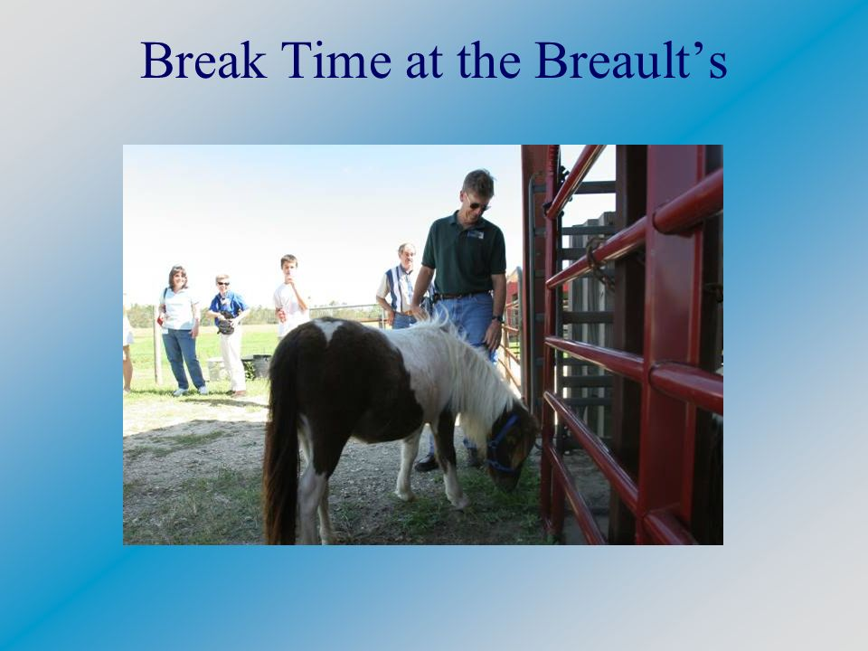 Break Time at the Breaults