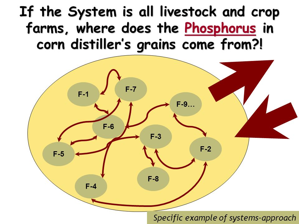 If the System is all livestock and crop farms, where does the Phosphorus in corn distillers grains come from .