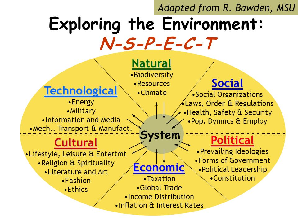 Exploring the Environment: N-S-P-E-C-T System Technological Energy Military Information and Media Mech., Transport & Manufact.