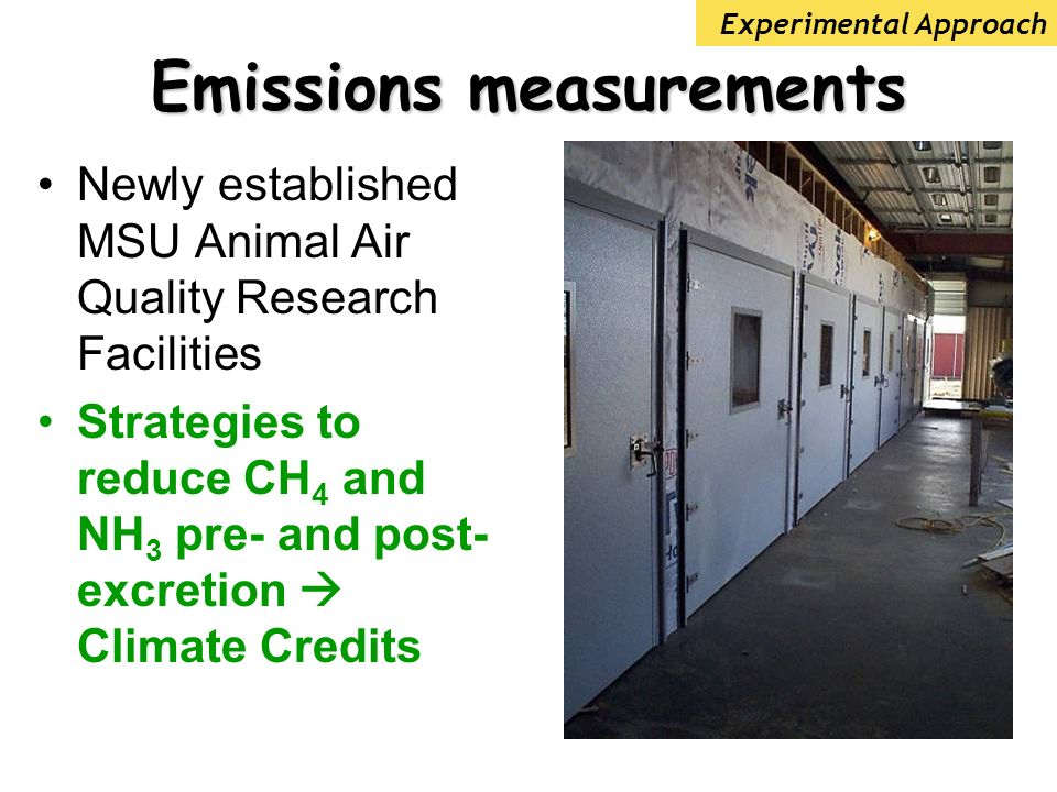 Emissions measurements Newly established MSU Animal Air Quality Research Facilities Strategies to reduce CH 4 and NH 3 pre- and post- excretion Climate Credits Experimental Approach