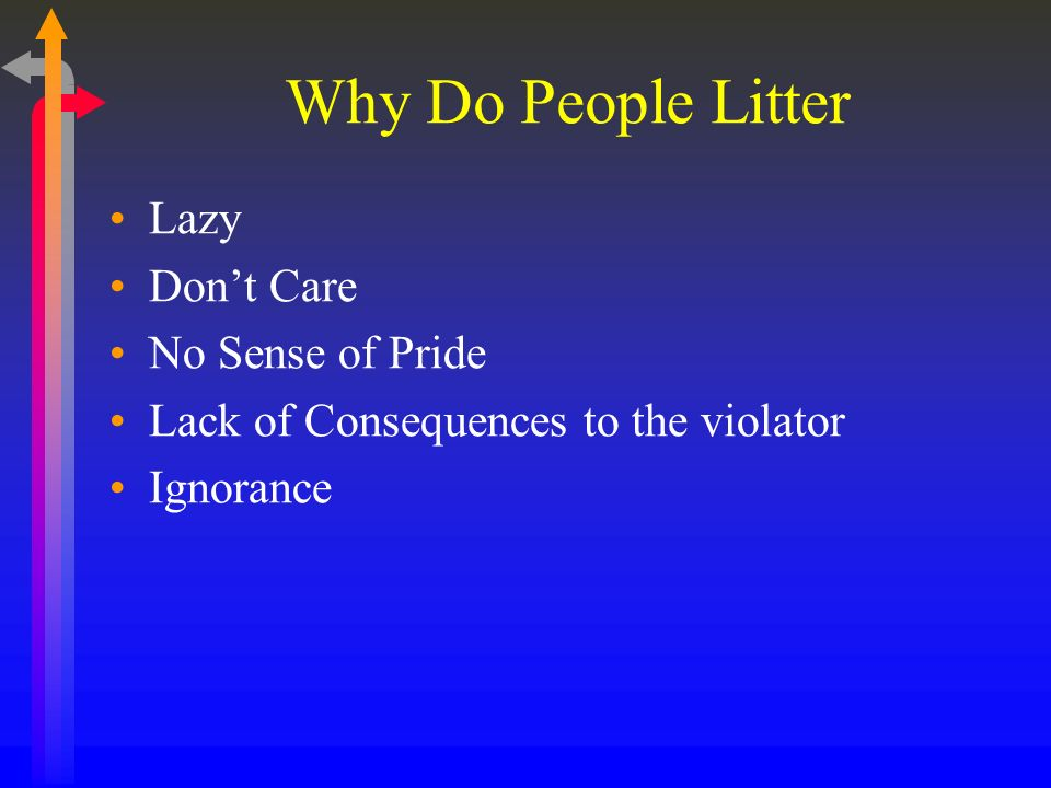 Why Do People Litter Lazy Dont Care No Sense of Pride Lack of Consequences to the violator Ignorance