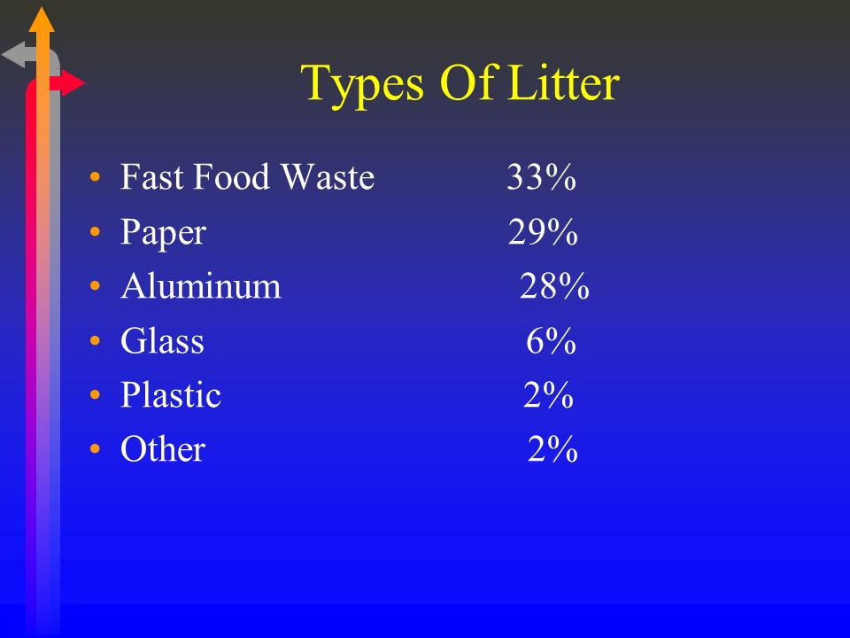 Types Of Litter Fast Food Waste 33% Paper 29% Aluminum 28% Glass 6% Plastic 2% Other 2%