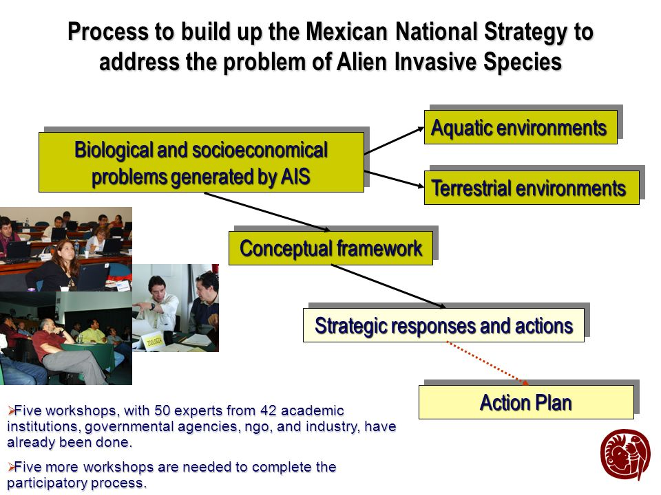 Process to build up the Mexican National Strategy to address the problem of Alien Invasive Species Five workshops, with 50 experts from 42 academic institutions, governmental agencies, ngo, and industry, have already been done.